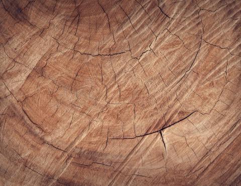 estrutura - madeira